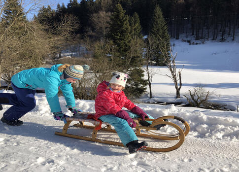 Sledging in the Krkonose Mountains